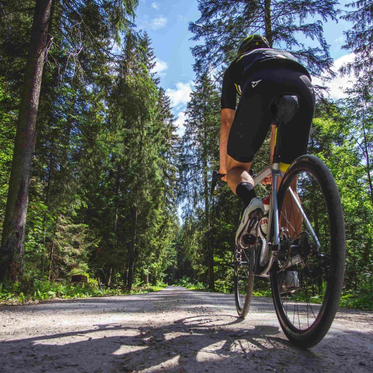 Entre Léman et Gruyère à vélo de route