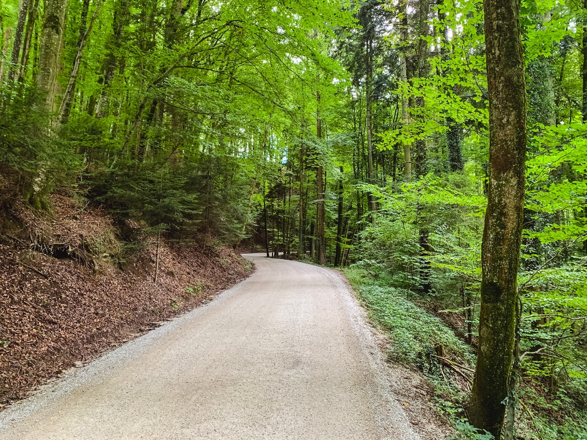 Berne gravel IMG_2360