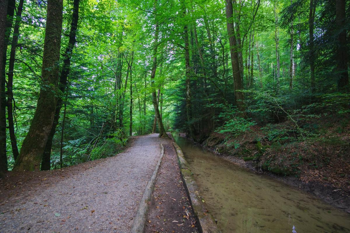 Berne gravel IMG_2363