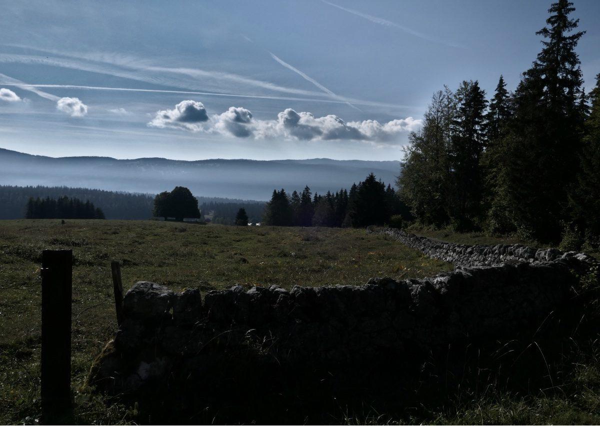 Vallée de Joux_8