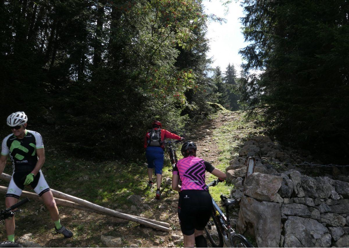 Vallée de Joux gravel Mont Tendre 8